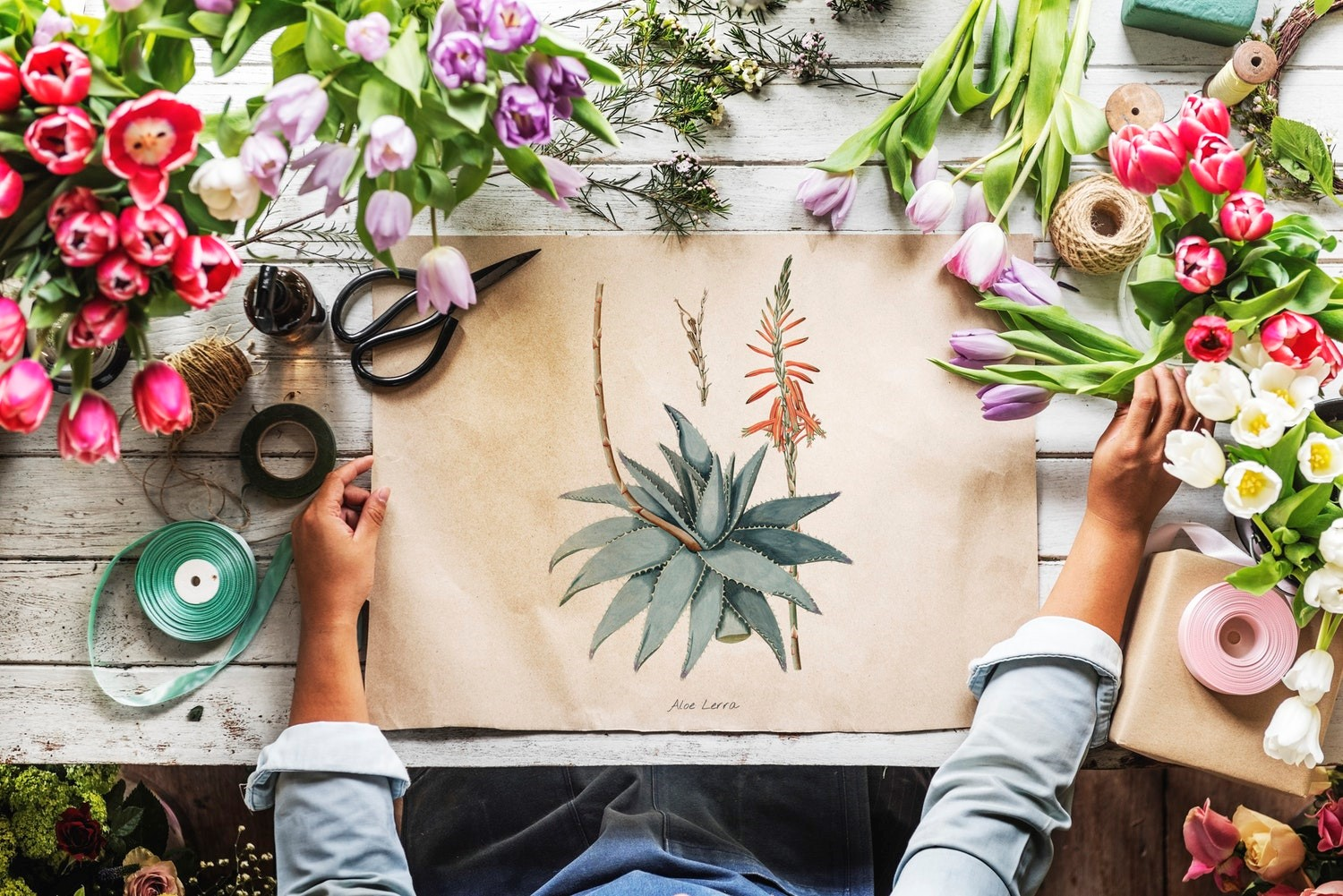How Hobbies Affect Mental Health Reach For Resources