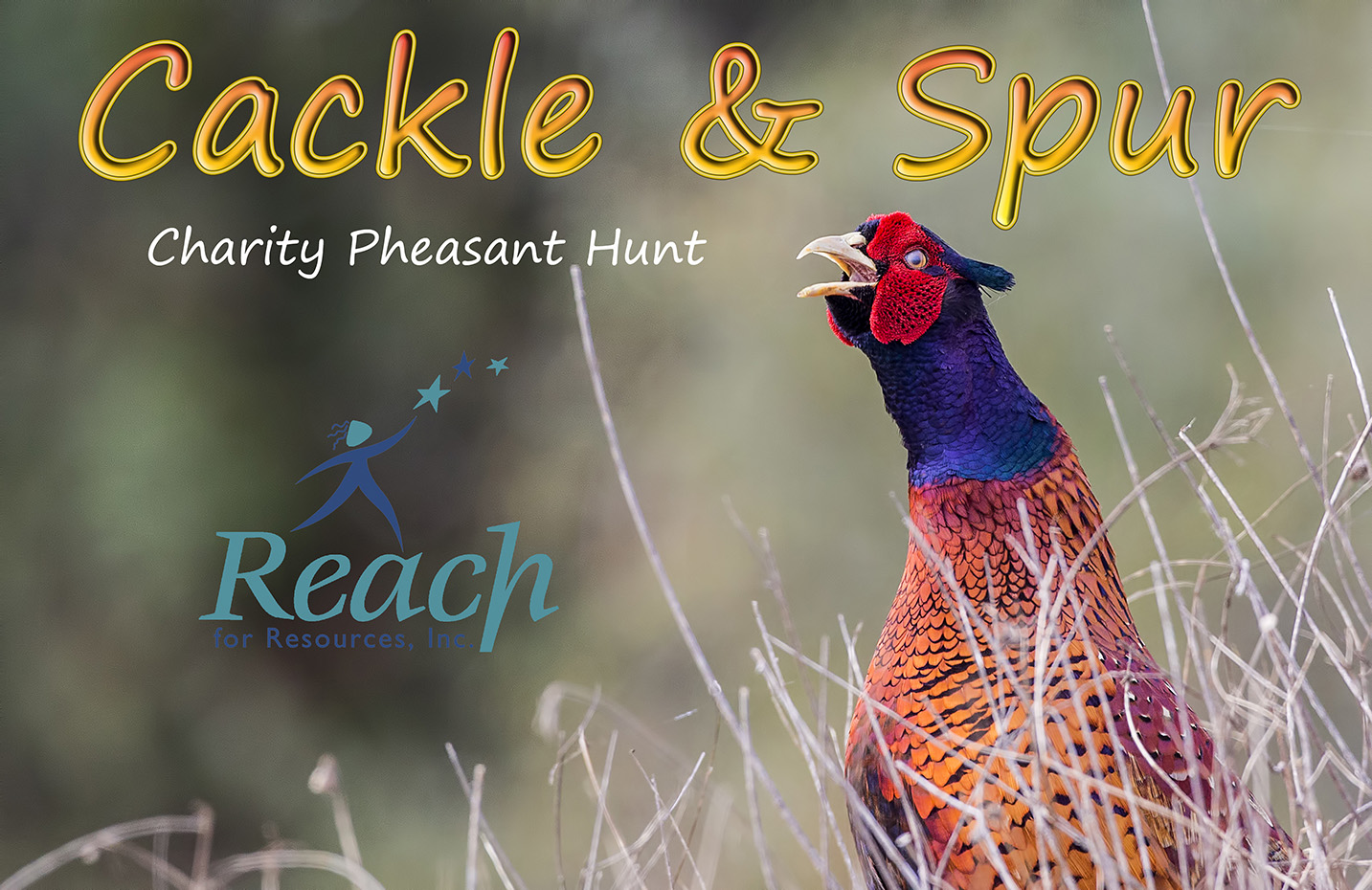 Cackle & Spur Event