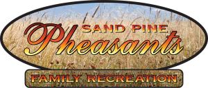 Sand Pine Pheasent